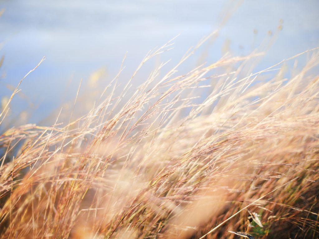 waaiende wind en lucht voor ademwerk